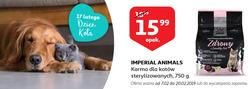 Oferty Auchan na ulotce Płock