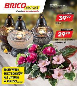 Oferty Bricomarche na ulotce Bricomarche ( Wygasłe)