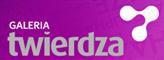 Logo Twierdza Zamość